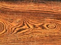 Bocote hout