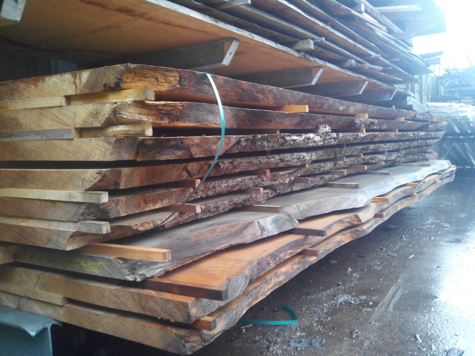 Libanon Cedar stamdelen