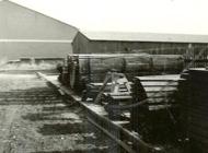 geschiedenis-van-de-amsterdamsche-fijnhouthandel-minervahaven-1